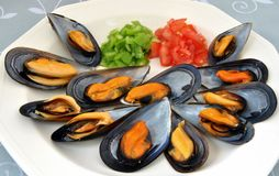 Plate of mussels Royalty Free Stock Photos