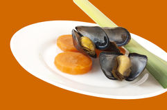 Plate with mussels, carrot and leek Stock Image