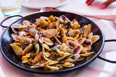 Plate with mussels Royalty Free Stock Photo