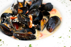 Plate of mussels in garlic sauce Royalty Free Stock Image
