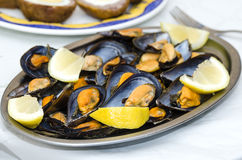 Plate of mussels Stock Photo