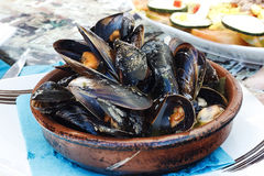 Plate with mussels Stock Images