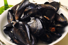 A plate of mussels Royalty Free Stock Images