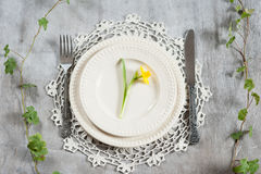 Plate with Narciso Stock Images