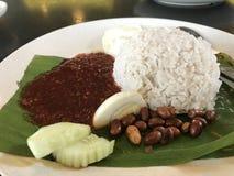 Plate of nasi lemak Stock Images