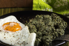 Plate with nettle stew and egg with spices Stock Images