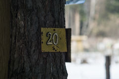 Plate number 20 is attached to a tree. Summer residence Stock Photography