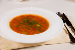 Plate of nutritious vegetable broth or soup Stock Photography