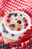 Plate with  oat flakes with milk and berries Royalty Free Stock Photo