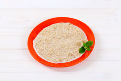 Plate of oatmeal porridge Stock Images