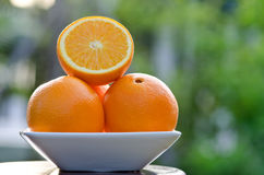 Plate of Orange Stock Photo