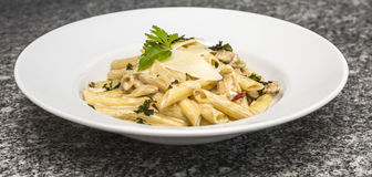 Plate with Pasta. Image of a plate with Italian penne rigate pasta with cheese sauce Stock Image