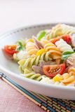Plate of pasta salad Royalty Free Stock Photography