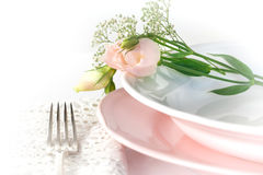 Plate and pastel flowers Stock Images