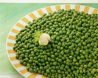 Plate of peas Stock Image