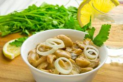Plate with pickled mushrooms Royalty Free Stock Photos