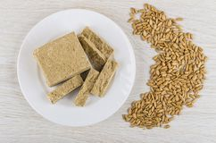 Plate with pieces of halva, heap of peeled sunflower seeds royalty free stock photos