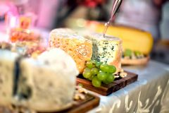 Plate with pieces of various types of cheese Royalty Free Stock Images