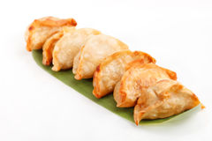 Plate of potstickers Royalty Free Stock Photos