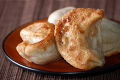 Plate of potstickers royalty free stock photo