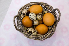 Plate with quail eggs and chicken eggs. Quail eggs in a wooden bowl. place for text. nutrition protein diet. Top view, flat lay wi Stock Photo