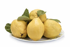 Plate with quinces. Plate with premium fresh quinces freshly harvested to cook Royalty Free Stock Image