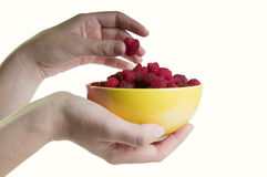 Plate with raspberries Royalty Free Stock Photo
