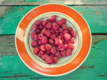 Plate with raspberries Stock Image