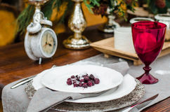 Plate with a raspberry in the snow on a table. red wine glass. Decor for winter photo shoot Royalty Free Stock Photo