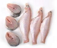 Plate of raw fish Royalty Free Stock Photos