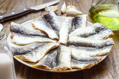 Plate of raw sardines on wood Royalty Free Stock Images