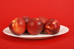 Plate of Red Apples royalty free stock photography