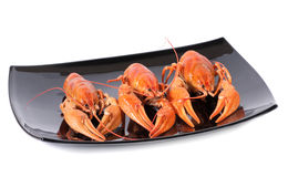 Plate of red boiled lobsters. Luxury diet meal Royalty Free Stock Photography