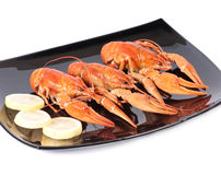 Plate of red boiled lobsters. With lemon. Luxury diet meal Royalty Free Stock Image