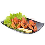 Plate of red boiled lobsters. With fresh lettuce. Luxury diet meal Royalty Free Stock Images