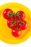 A plate of red tomatoes isolated on white Stock Photography