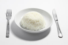 Plate of Rice Stock Photography