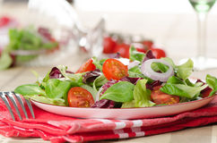 Plate of salad Royalty Free Stock Image
