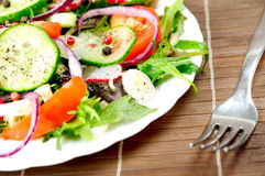 Plate with salad Stock Photo