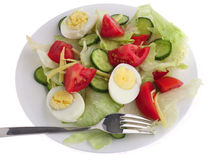 Plate of salad with fork Royalty Free Stock Photo