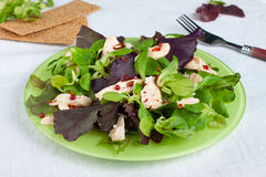 Plate of salad Royalty Free Stock Photography