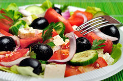 Plate with salad Royalty Free Stock Photo