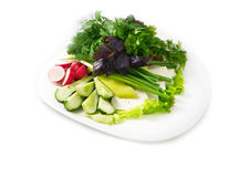 Plate of salad include lettuce, basil, parsley, cucumber, feta cheese, radish, on the white background Stock Photos