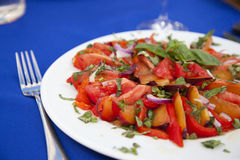 Plate with a salad of tomatoes Stock Photography