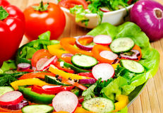 Plate with salad Royalty Free Stock Image