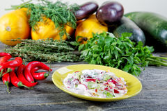 Plate of salad with vegetables and spices Stock Images