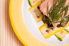 Plate with salmon and dill Royalty Free Stock Photo