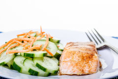 Plate of Salmon and Salad Royalty Free Stock Photos