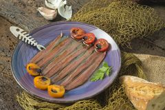 Plate of salted anchovies with olive oil royalty free stock image