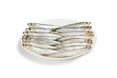 Plate with salted Baltic sprat Royalty Free Stock Images